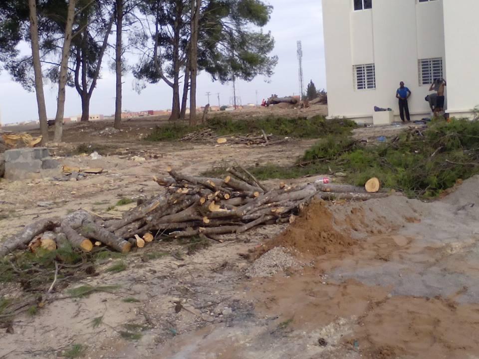 """حرب على البيئة في إبن أحمد قبيل مؤتمر الأمم المتحدة حول المناخ """" كوب 22 """" بمراكش"""