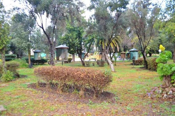 حديقة السلام المهجورة