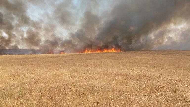 حريق مهول يأتي على عشرات الهكتارات من أرض فلاحية قريبة من إقامة عامل الاقليم