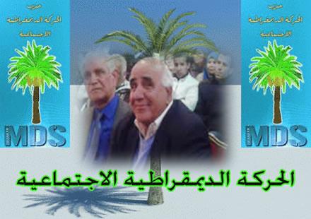 """المجلس الدستوري يُجرِّدُ """"عبد السلام السلاوي"""" من مقعده البرلماني"""