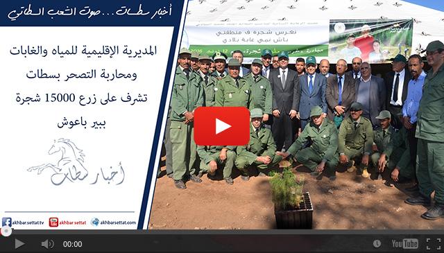 المديرية الإقليمية للمياه والغابات ومحاربة التصحر بسطات تشرف على زرع 15000 شجرة بإقليم سطات