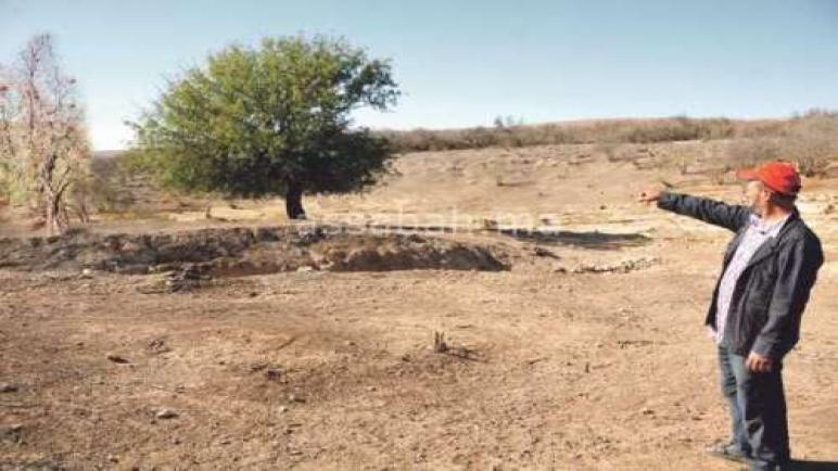 روبرطاج: رمان تماسين.. أكثر من 300 هكتار من بساتين الرمان في خبر كان بعد جفاف عيون المنطقة